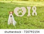 shot of a wire fox terrier... | Shutterstock . vector #720792154