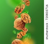 walnuts and leaves falling from ... | Shutterstock . vector #720833716
