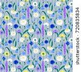 wildflower summer seamless... | Shutterstock .eps vector #720835834