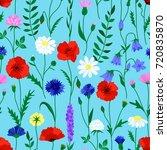 wildflower summer seamless... | Shutterstock .eps vector #720835870