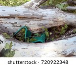 Small photo of Park bench crushed under a large uprooted tree. Extreme weather damage. Storm aftermath in the city.