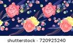 seamless pattern  hand drawn... | Shutterstock .eps vector #720925240