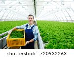 successful young agro engineer... | Shutterstock . vector #720932263