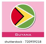 guyana flag icon | Shutterstock .eps vector #720959218