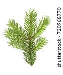 fir branch isolated on a white... | Shutterstock . vector #720968770