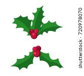 european symbol of christmas... | Shutterstock .eps vector #720978070