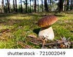 cep mushroom .boletus in the... | Shutterstock . vector #721002049
