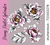 "set of a peony ""pastel splendor""...   Shutterstock .eps vector #721022278"