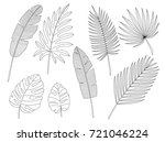 set of leaves in the contour... | Shutterstock .eps vector #721046224