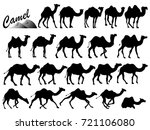 visual drawing silhouettes of... | Shutterstock .eps vector #721106080