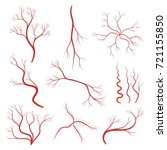set of human veins or vessel ... | Shutterstock .eps vector #721155850