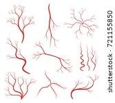 set of human veins or vessel ...   Shutterstock .eps vector #721155850