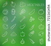thin line vegetable vector icon ... | Shutterstock .eps vector #721161454