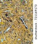 fallen golden pine needles on a ... | Shutterstock . vector #721169173