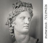 head and shoulders detail of... | Shutterstock . vector #721194226