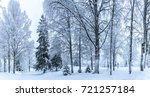 winter forest. forest in the... | Shutterstock . vector #721257184