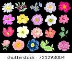 flower set | Shutterstock .eps vector #721293004