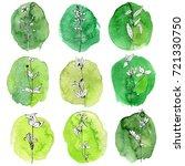 vector drawing wild plants ... | Shutterstock .eps vector #721330750