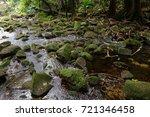 jungle  tropical rainforest  of ... | Shutterstock . vector #721346458
