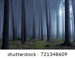forest in autumn morning mist | Shutterstock . vector #721348609
