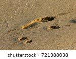 footprints in the sand | Shutterstock . vector #721388038