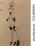 footprints in the sand | Shutterstock . vector #721389094