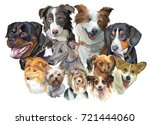 set of colorful vector... | Shutterstock .eps vector #721444060