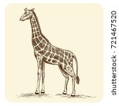 hand drawing of giraffe animal... | Shutterstock .eps vector #721467520