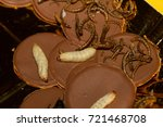 crickets  worms and larvas... | Shutterstock . vector #721468708
