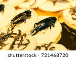 crickets  worms and larvas... | Shutterstock . vector #721468720