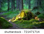 old stump  with green moss in... | Shutterstock . vector #721471714