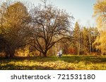 autumn park on sunny day with a ... | Shutterstock . vector #721531180