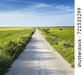 country road with green fields... | Shutterstock . vector #721535299