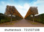 autumn in the catherine park of ... | Shutterstock . vector #721537108