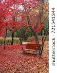 autumn park | Shutterstock . vector #721541344