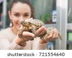 Stock photo  smiling girl posing with two land tirtles in pet store 721554640