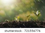 young plant growing finance and ... | Shutterstock . vector #721556776