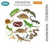 pet reptiles and amphibians... | Shutterstock .eps vector #721564234