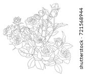 sketch of branches of roses and ...   Shutterstock .eps vector #721568944