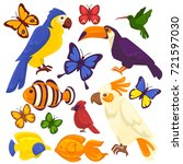 exotic birds  tropical fishes... | Shutterstock . vector #721597030
