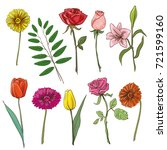 set of traditional flowers for... | Shutterstock . vector #721599160