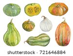 watercolor pumpkin  squash ... | Shutterstock . vector #721646884