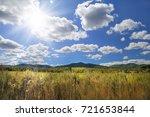 autumn landscape  field ... | Shutterstock . vector #721653844
