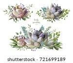 succulent flower plant... | Shutterstock .eps vector #721699189