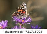 close up side view of an... | Shutterstock . vector #721715023