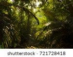 india mountain jungle   Shutterstock . vector #721728418