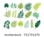 set of tropical leaves. jungle... | Shutterstock .eps vector #721731370