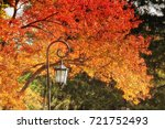Small photo of Foliage at Wellesley College