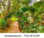 walk way in the park  scenery...   Shutterstock . vector #721767229