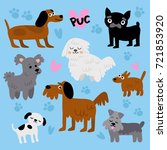 set of cute dogs. dog symbol... | Shutterstock .eps vector #721853920